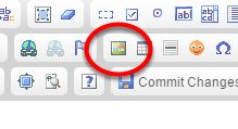 Add an image by clicking on the Image icon in the WYSIWYG.