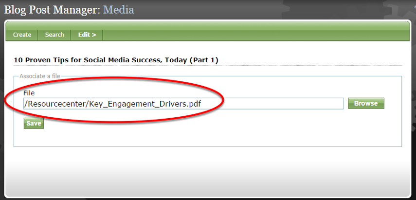 The file path should now appear on the Media page of the Article or Blog Post Manager.