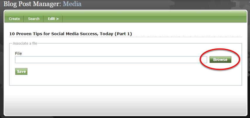 To associate a file with your content, select Browse to access the Media Manager.