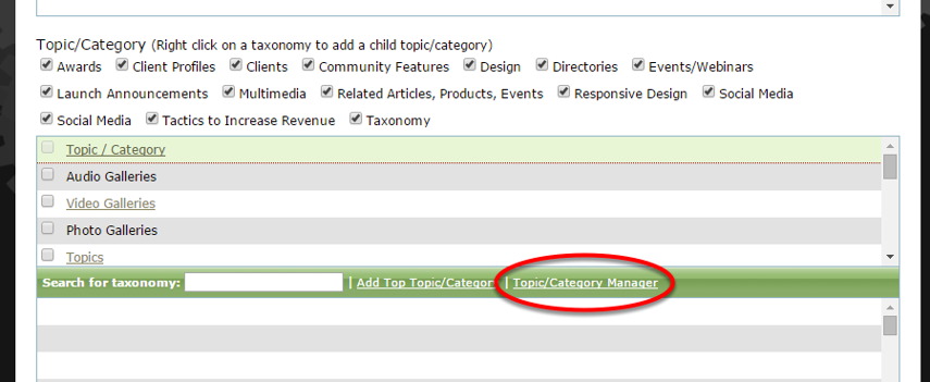 Or in the Supplemental section of editing an article or blog post, select Topic/Category Manager.
