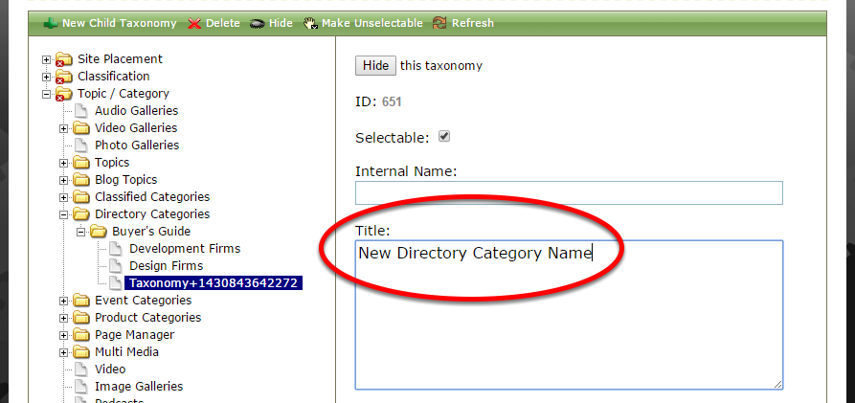Type the new category name under Title.