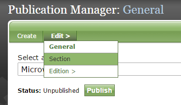 Click on Section under Edit to add sections to your publication.