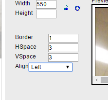 While in the Image Properties box, make any alternative text updates, or border and space/padding adjustments to your image if desired.