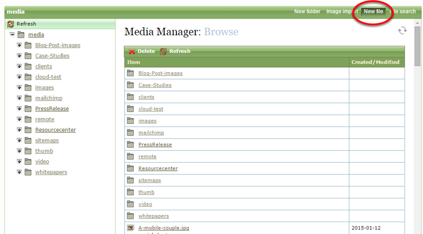 Within the Media Manager, click New File in the top right of the window.