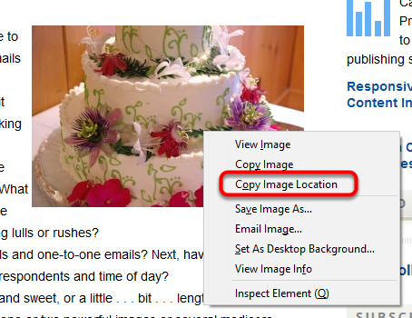 You may also right-click on an image on your website, and select Copy Image URL or Copy Image Location.