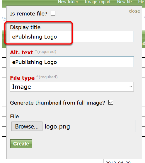 The Display Title is generally not required for images, but you may add one.