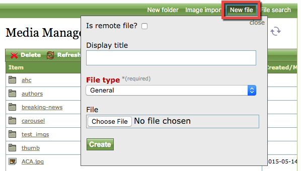 Then at the top right of the Media Manager, click New file.