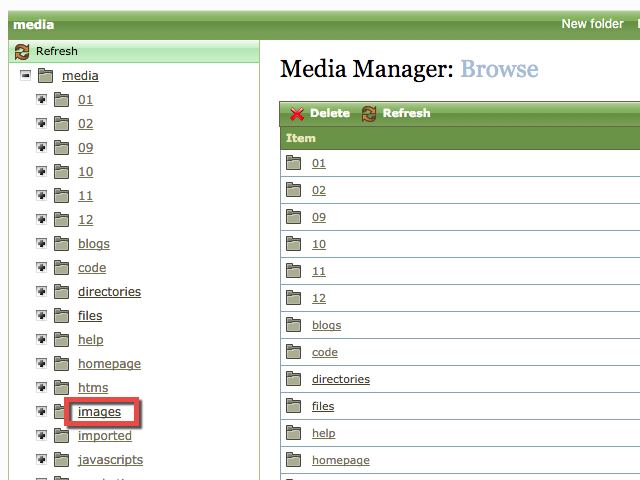 In the directory structure on the left in the Media Manager, click Images.