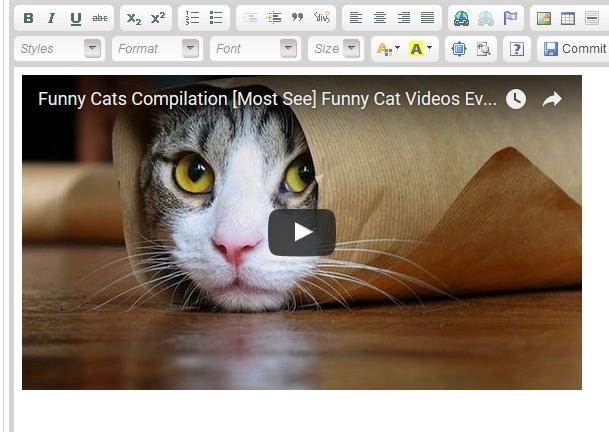 Click SOURCE again in your WYSIWYG editor; you may see your video.