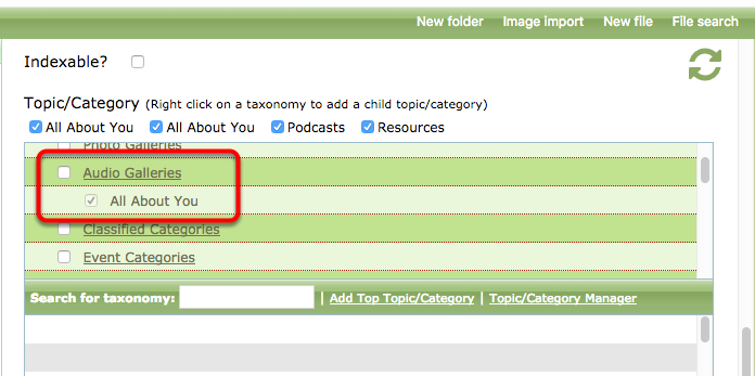 Select the box next to the Topic / Category > Audio Galleries > [podcast name] to associate the episode with the podcast.