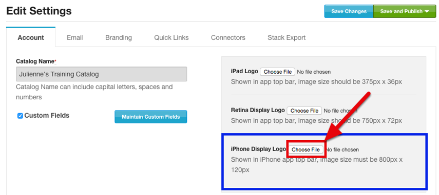 "Click ""Choose File"" within the iPhone Display Logo section"