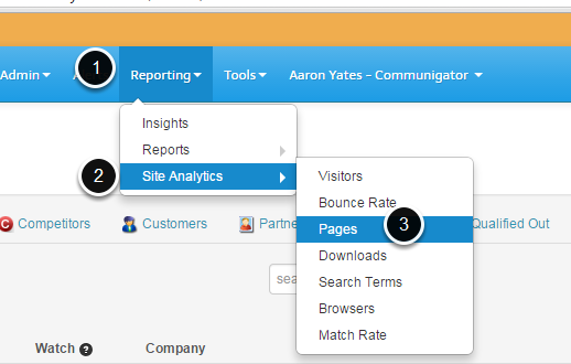 Accessing Site Analytics