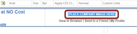 Highlight the text '(PLACE COMPANY IMAGE HERE)