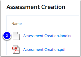 Select the iBook or PDF