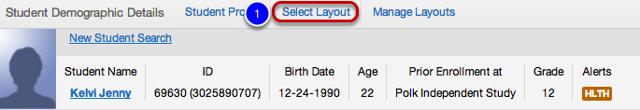 Using your Custom Layout