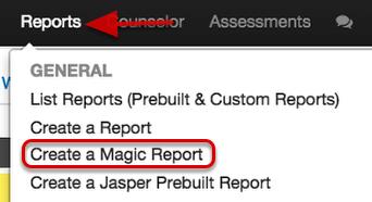 Magic Reports