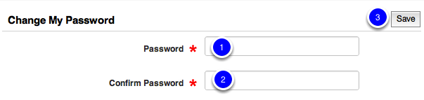 Type Your New Password