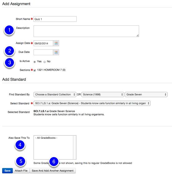 Optional Assignment Details