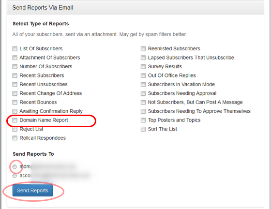 """Select """"Domain Name Report"""" and the email address where you want to receive the report:"""