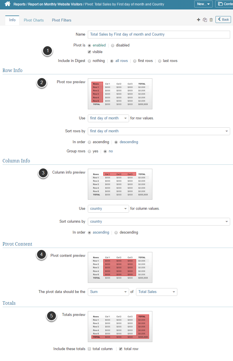 Complete Pivot Information (Info tab)