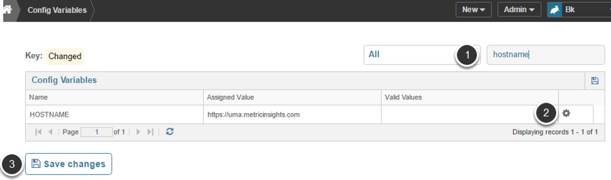 Update Hostname config variable in Metric Insights