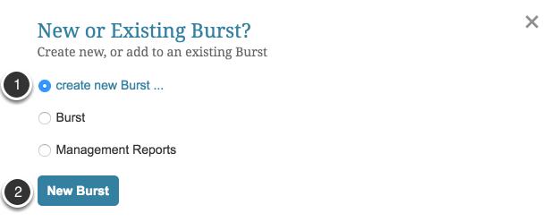 To set up a new burst