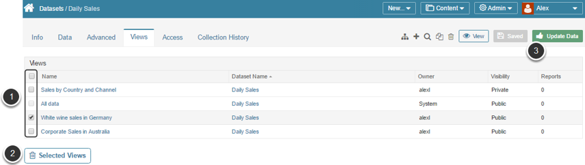 Access Dataset Editor > Views tab