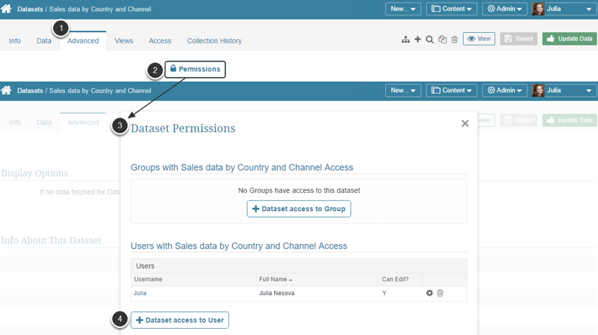 Dataset Access Permissions (for viewing and editing Datasets)