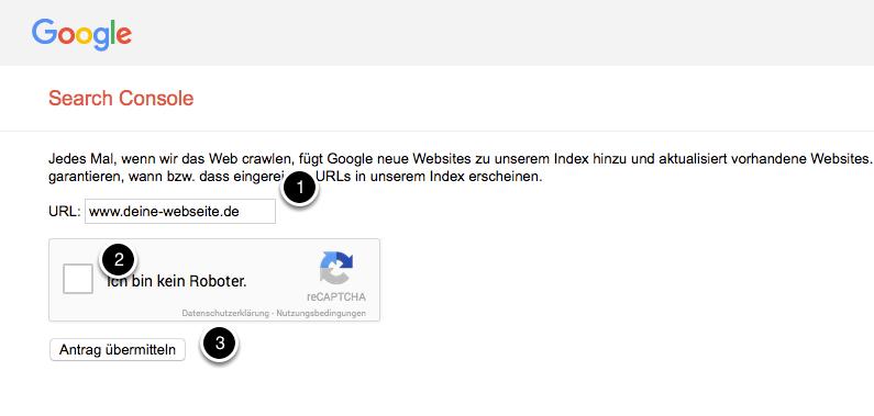 Falls kein Suchergebnis erscheint: Füge Deine URL dem Index manuell hinzu
