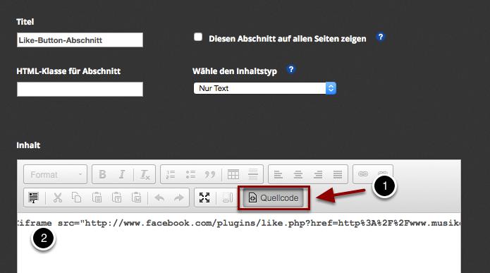 Schritt 2: Lege einen Einfachen Abschnitt an beliebiger Stelle auf Deiner Webseite an und füge den Code dort ein.