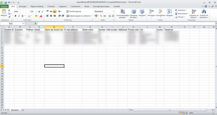 The Excel file