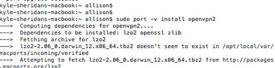 Open the VPN Software