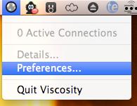 Install Viscosity