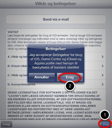 Før du kan installere opdateringen skal du acceptere vilkår og betingelser