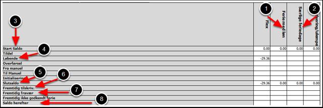 Oversigt over hvordan skemaet med resteferie læses