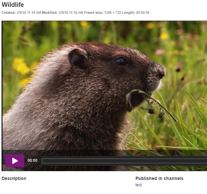 Din video er nu tilføjet til kanalen og delt