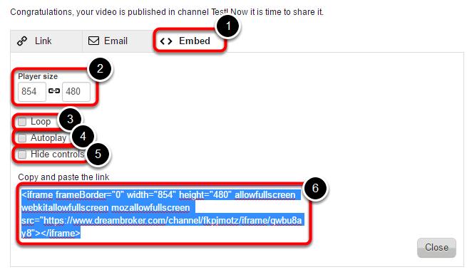 Del din video via Embed-kode