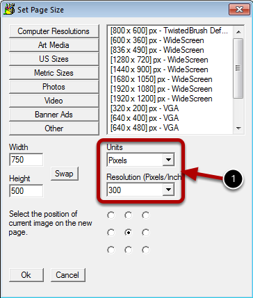 Adjusting the PPI Setting