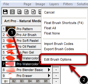 Launching the Brush Options Dialog