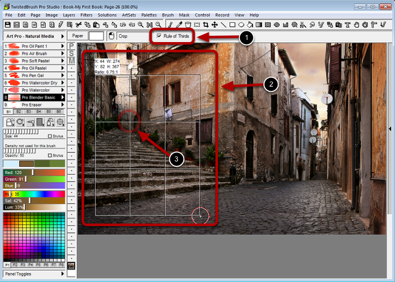 Rule of Thirds Option