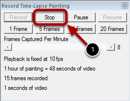 Step 5 : Stopping the Recording