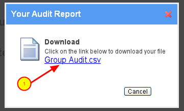 2. A .CSV report will be generated.