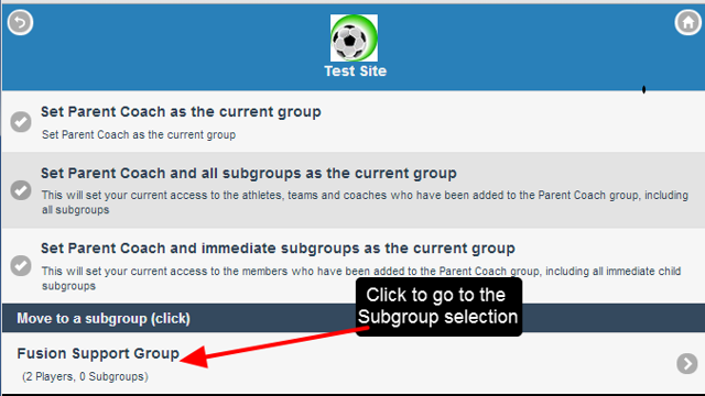 An example of loading a Subgroup only