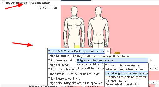 Select the Correct Orchard Code for the new Injury or Illness