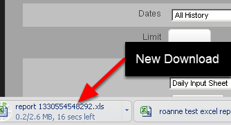 Open the Excel Download