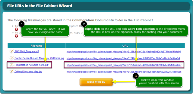 The Collaboration Documents URL window opens ...