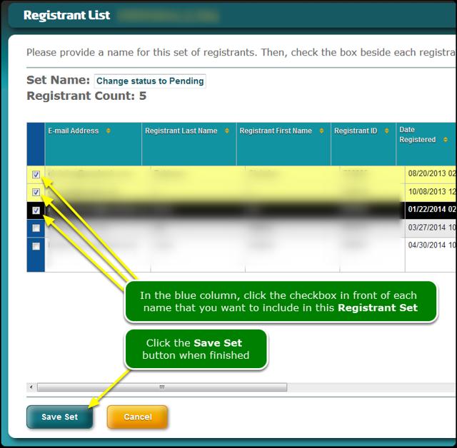The Registrant Set definition screen opens ...