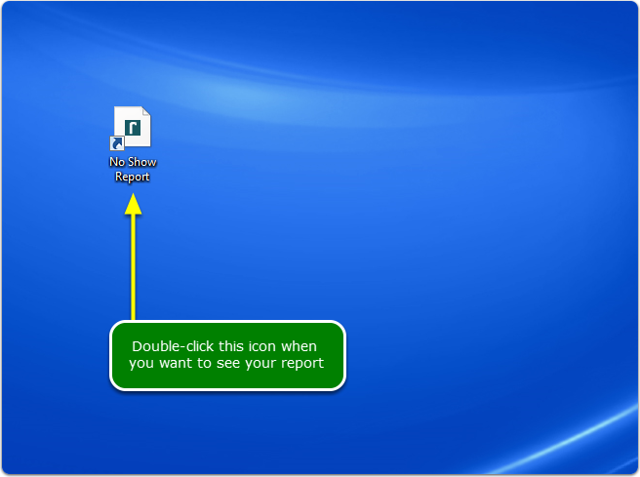 Double-click the shortcut icon to open your report.