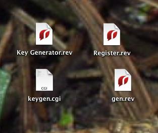 The four Zygodact files