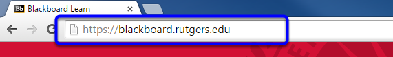 Type in https://blackboard.rutgers.edu in the web address bar, and tap the enter key.